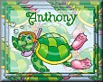TurtleAnthony